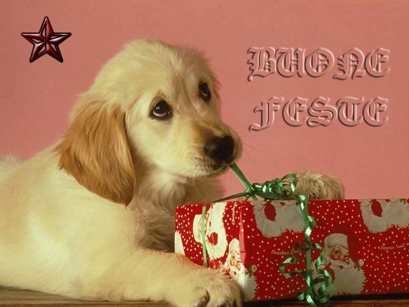Sfondo Natale Cagnolino