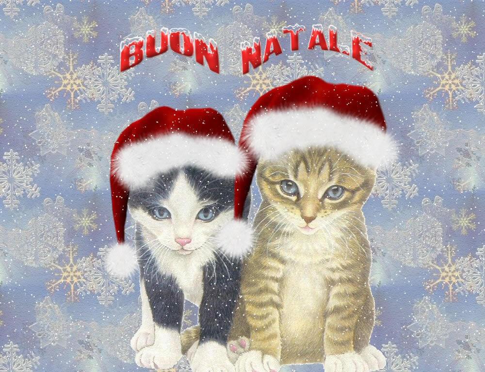 Sfondo Desktop Natale Gattini